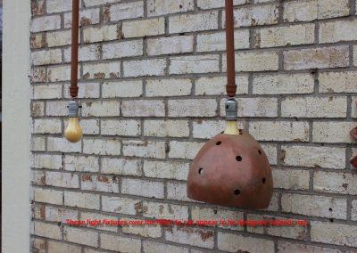 bulbs2